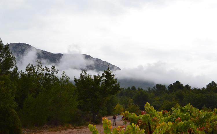 Provence_hiking_0378