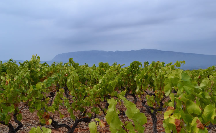 Provence_hiking_0380
