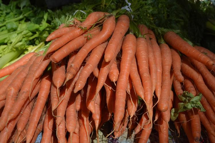 Aix-Food-Market-0971