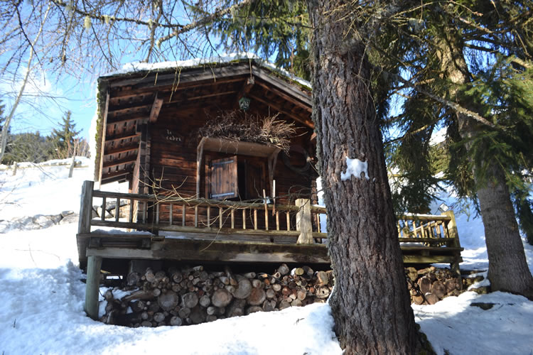 Ski-chalet-French-Alps-0698